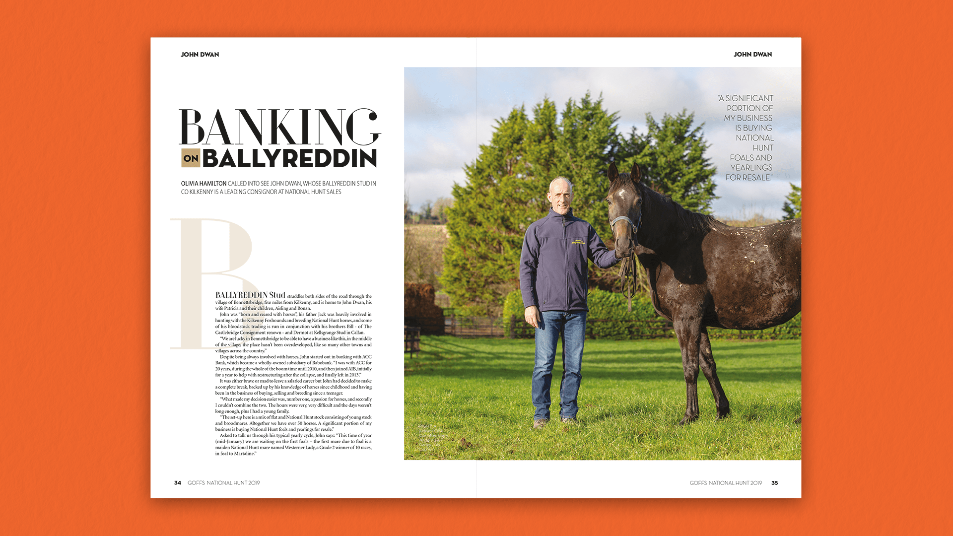 Goffs National Hunt 2019 Feature Spread A