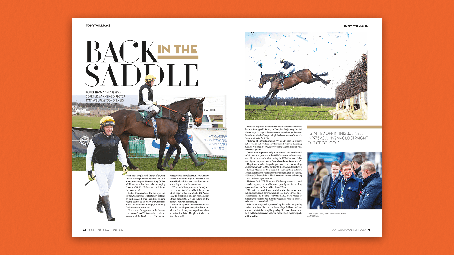 Goffs National Hunt 2019 Feature Spread B