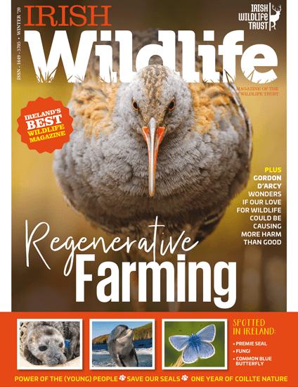 Irish Wildlife Winter 2020 Cover