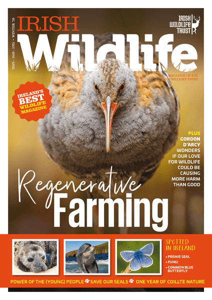 Irish Wildlife Winter 2020 Cover